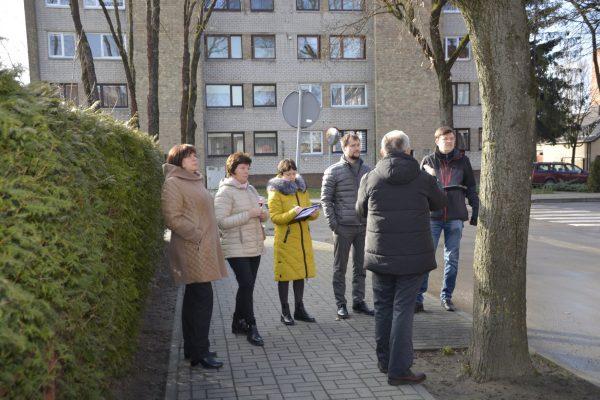 Marijampolės Lietuvininkų gatvės želdinių būklę