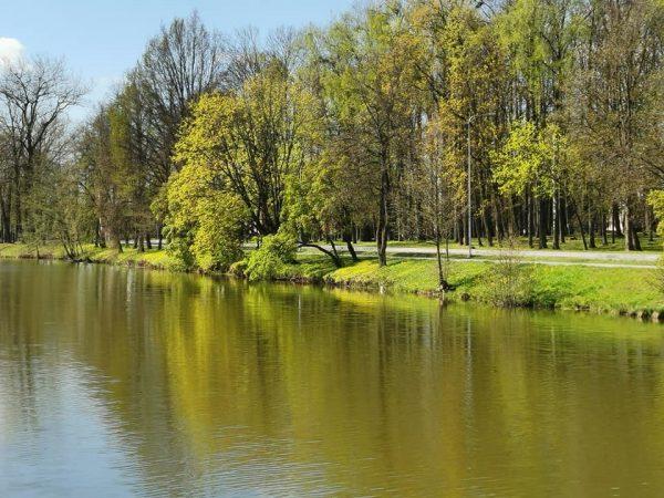 Šakių ežeras