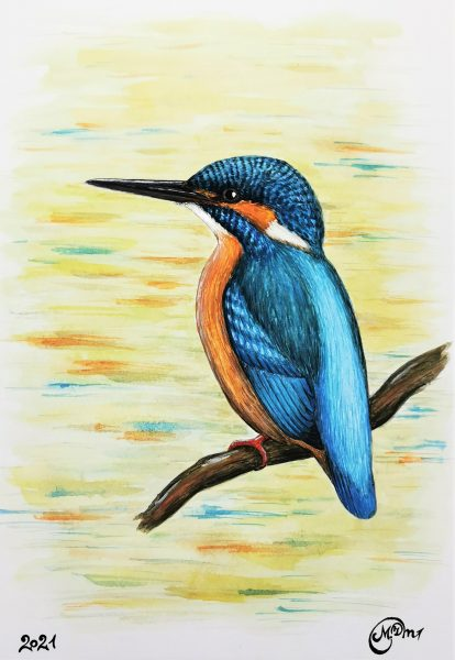 Mindaugo ilčiuko plunksmų kolekcija piešinys
