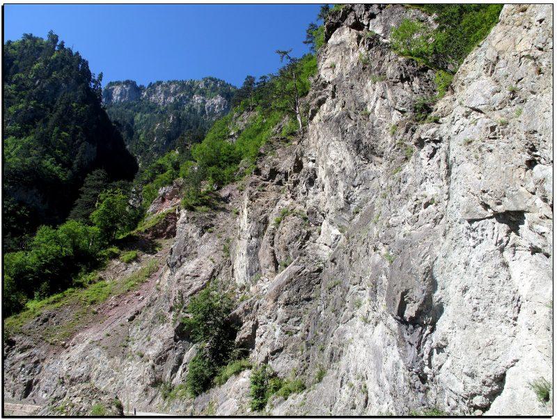 Juodkalnija-Tara