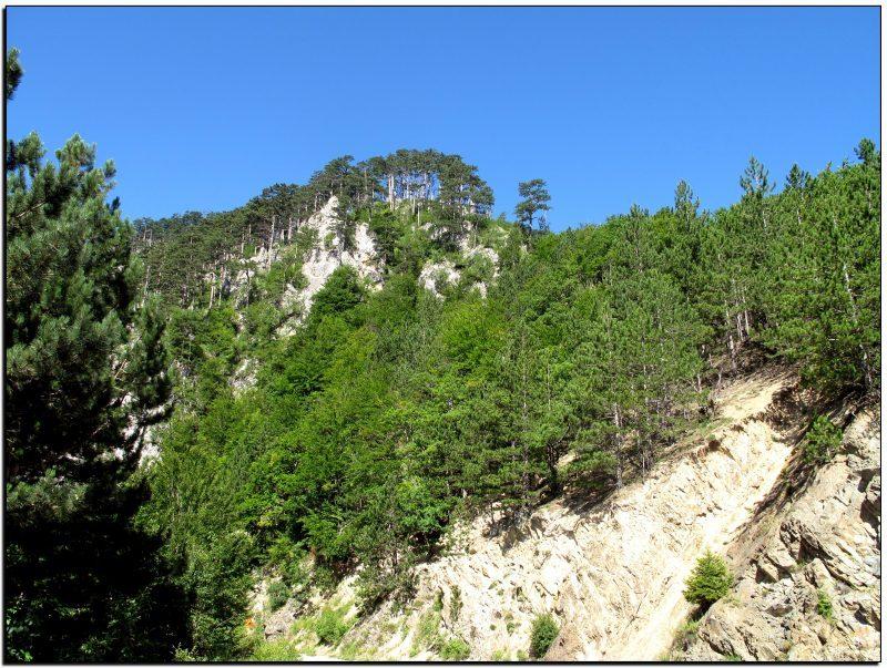 Juodkalnija-Taros kanjonas