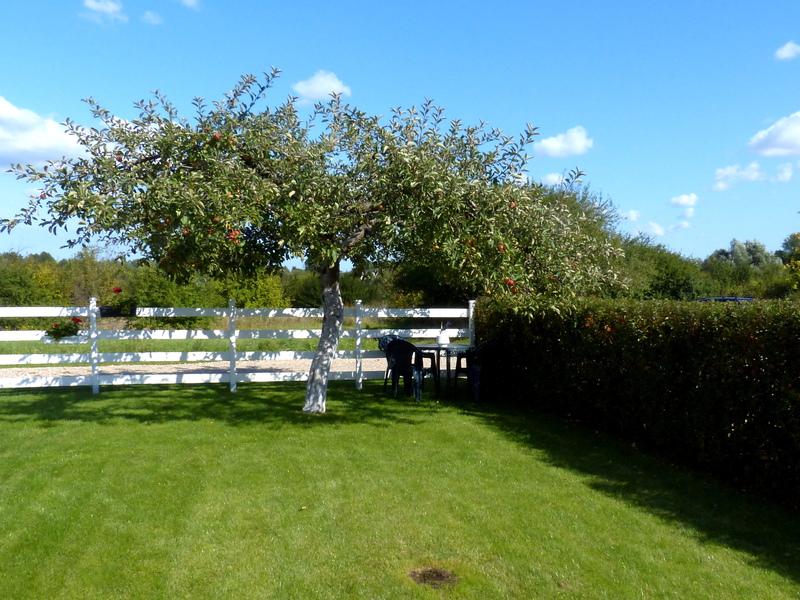 Laimutės ir Romo Jankauskų sodas